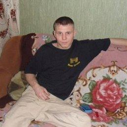 Евгений, 35 лет, Пушкин