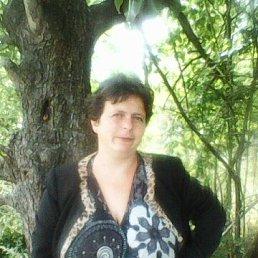 Антонина, 38 лет, Винница