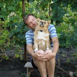 Вячеслав, 48 лет, Белгород