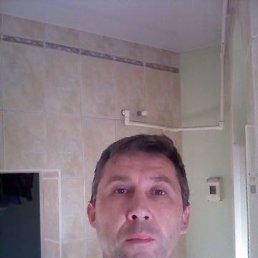 Денис, 42 года, Ейск