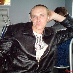 Александр, 39 лет, Воронеж