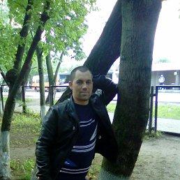 Николай, 36 лет, Балашиха