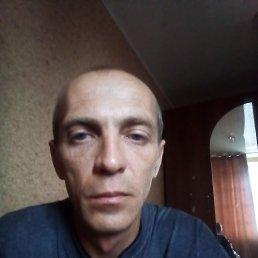 Александр, 41 год, Михайловск
