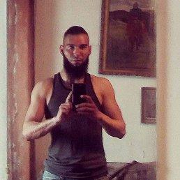 Роман, 28 лет, Боровая