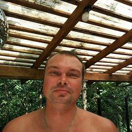 Алексей, 41 год, Санкт-Петербург