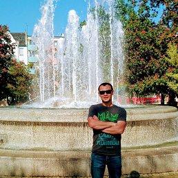 Виталий, 31 год, Кременчуг