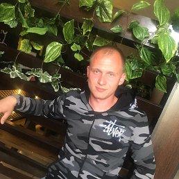 Саша, 28 лет, Новосибирск