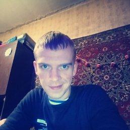 Иван, 28 лет, Солнечногорск