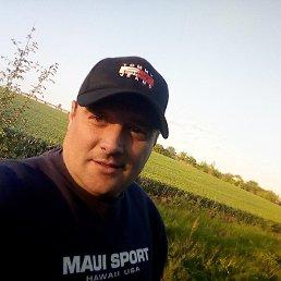 Андрей, 38 лет, Новодонецкое