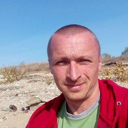 Александр, 33 года, Пологи