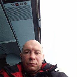 Николай, 35 лет, Кемерово