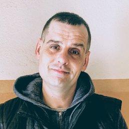Андрей, Тула, 43 года