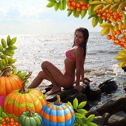 Екатерина, 31 год, Ярославль