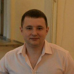 Андрей, 35 лет, Химки