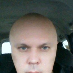 Дмитрий, 41 год, Тула