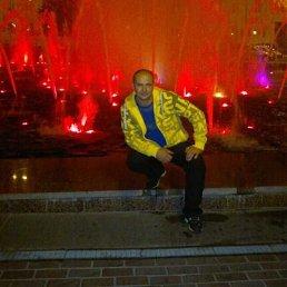 Игорь, 37 лет, Батайск