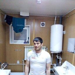 Сашок, 30 лет, Омск