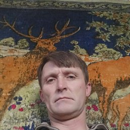 Сергй, 40 лет, Тульчин