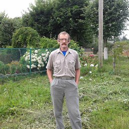 Александр, Иваново, 62 года