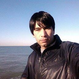 Али, 27 лет, Сочи