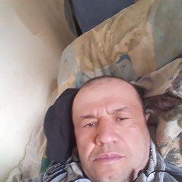 Фахриддин, 42 года, Мытищи