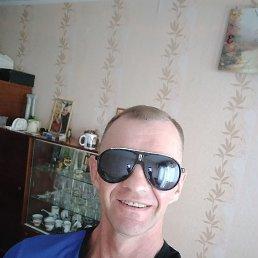 Андрей, 49 лет, Бронницы