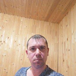 Вячеслав, 37 лет, Пермь