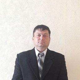 Алексей, 41 год, Линево