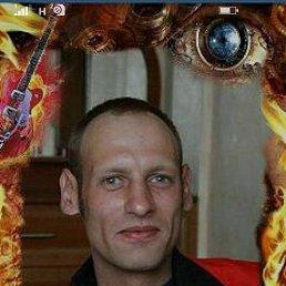 Миша, 41 год, Томск