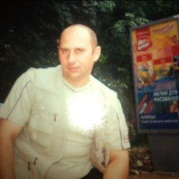 Алексей, 44 года, Озеры