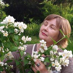 Лариса, 53 года, Яхрома
