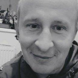 Oleh, 37 лет, Борисполь