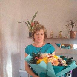 Елена, 42 года, Волгоград