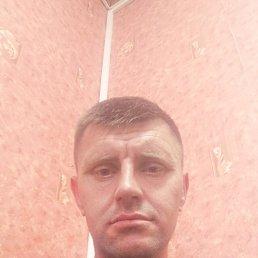 Евгений, 40 лет, Хабаровск