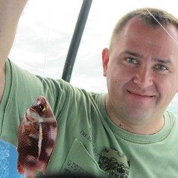 Сергей, Тольятти, 46 лет