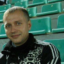 Максим, 33 года, Краснодар