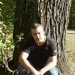 Станислав, 42 года, Барнаул
