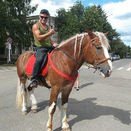 Дмитрий, 38 лет, Данилов
