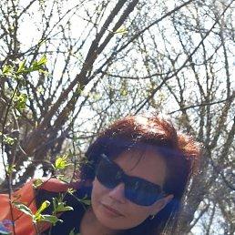 Светлана, 41 год, Липецк