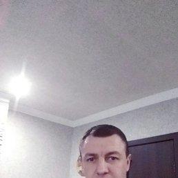 Миша, 37 лет, Виноградов