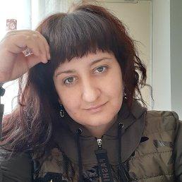 Анна, 37 лет, Ставрополь