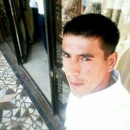 Рома, 27 лет, Иркутск