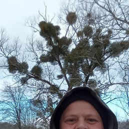 Алексей, Калининград, 33 года