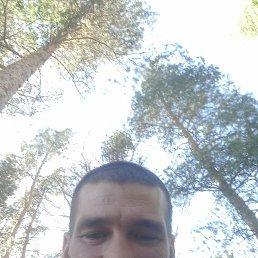 Дима, 37 лет, Сатка