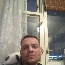 Евгений, 42 года, Химки