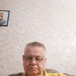 Валерий, 74 года, Нижний Новгород