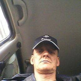 Сергей, 43 года, Подольск