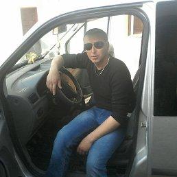 Тарас, 33 года, Тернополь