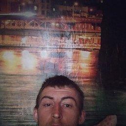 Павел, 29 лет, Курск