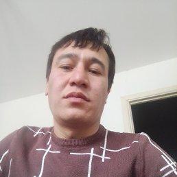 Акмал, 29 лет, Краснодар